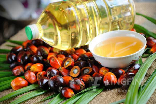 palm oil in south africa, palm oil manufacturers